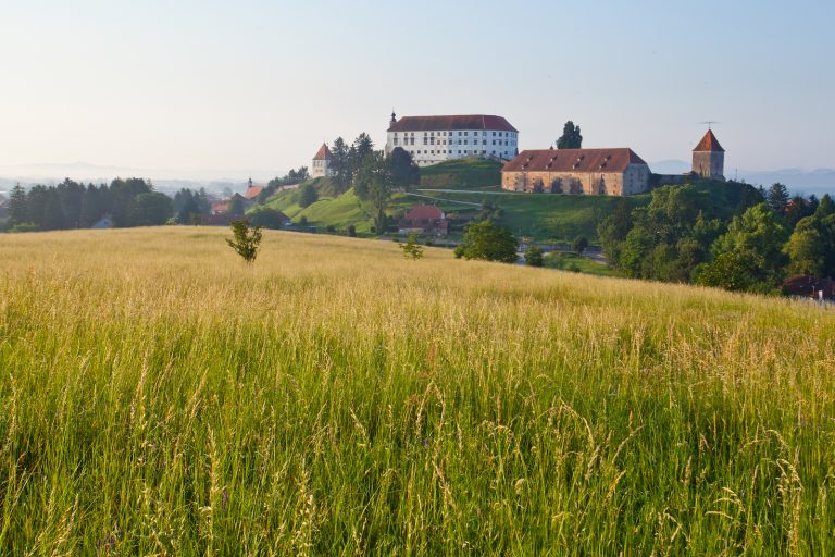 Ptuj (author: Jošt Gantar)